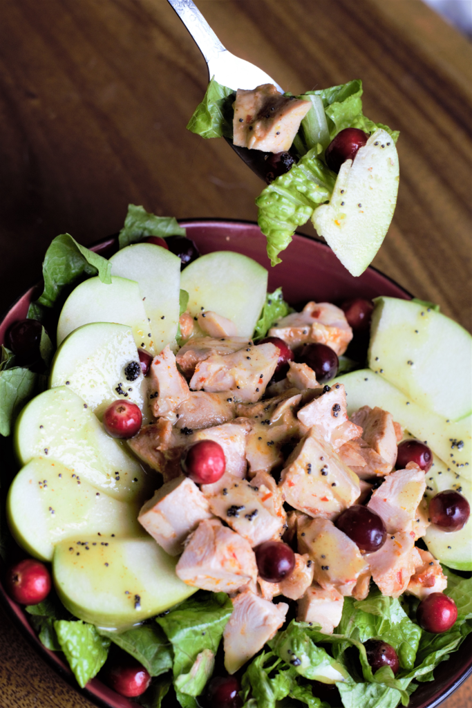 Chicken Cranberry Apple Salad with Lemon Poppyseed Dressing | Mountain Cravings