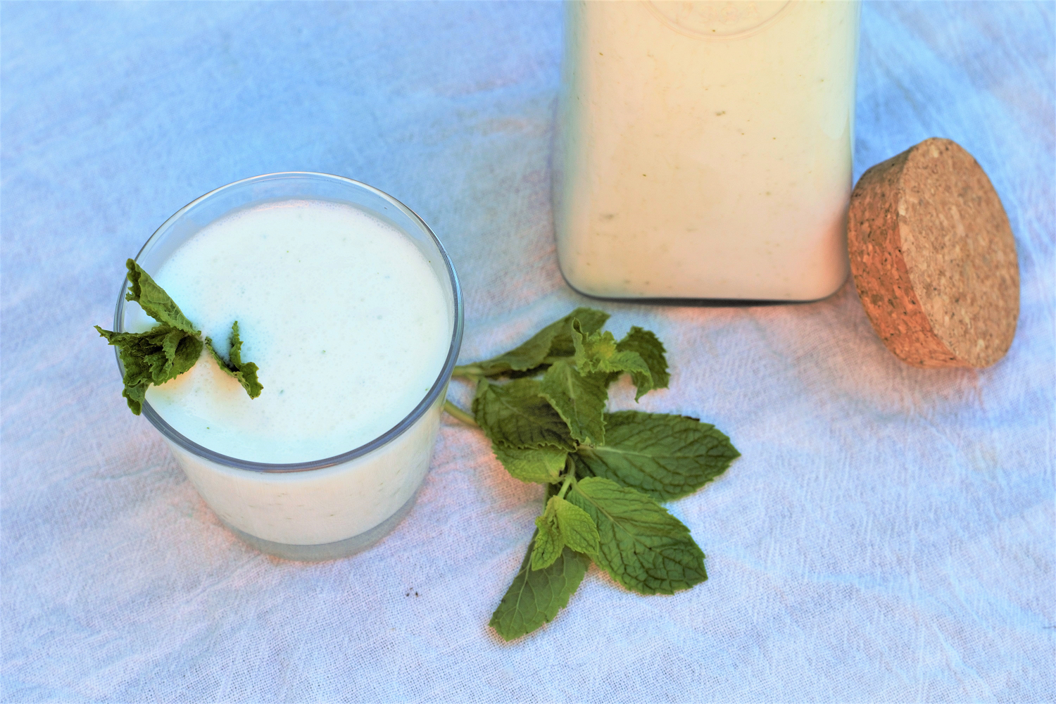 Turkish Mint Ayran | Mountain Cravings